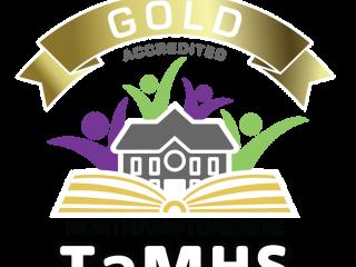 We won the GOLD TaMHS award